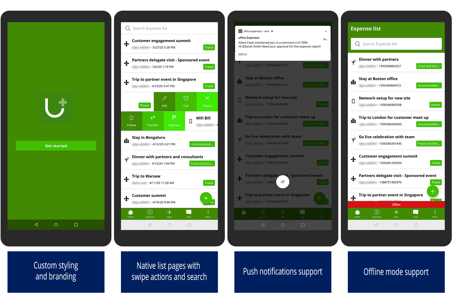 Overview of mobile features with custom styling, push notifications, offline                     mode, and native list pages with swipe actions.