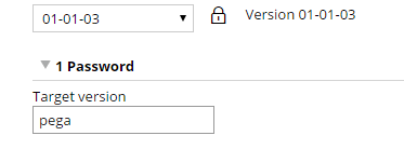 Target version field in the Password field