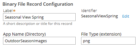 Binary File Record Configuration