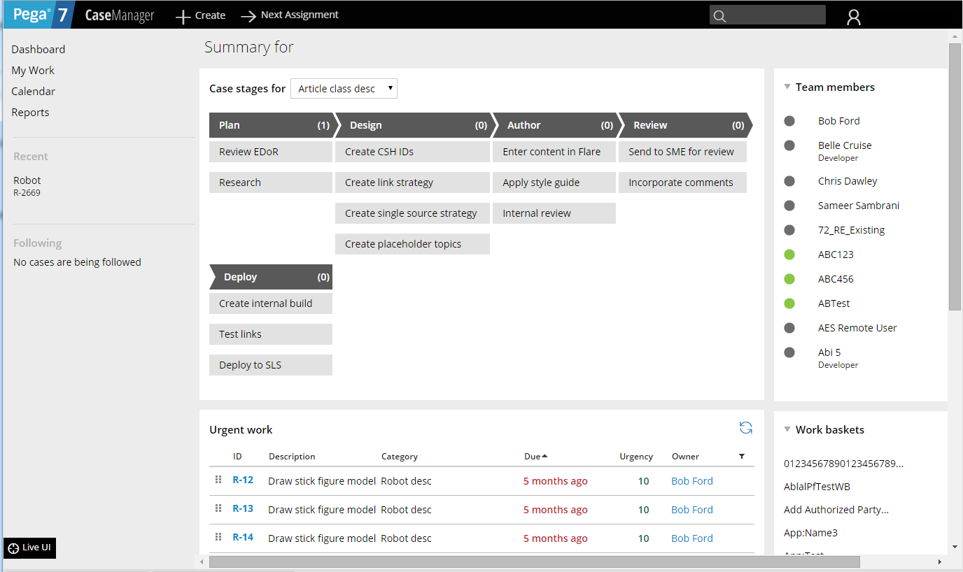 Example Case Manager portal