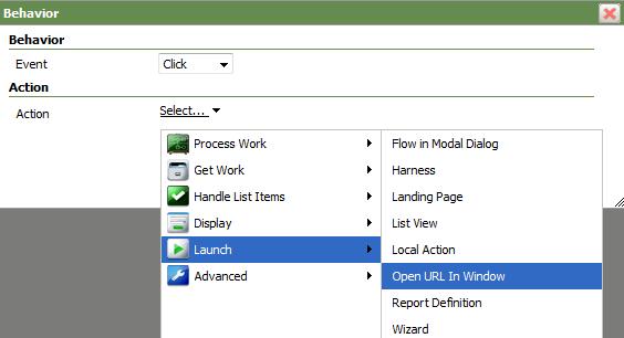 Select Launch > Open URL in Window