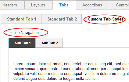 Preview custom tab format