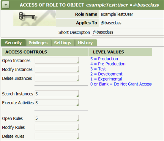 Access of Role to Object exampleTest User
