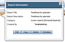 report information form